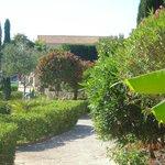 Avithos garden 1