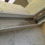 LRomm dirty window
