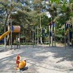 Play area near the petting zoo
