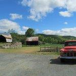 Pure Vermont