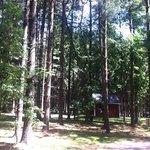 Rustic camping area.