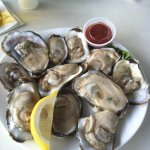 Fattest oysters ever!