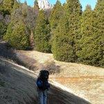 Hiking up the Ladybug Trail