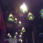 Cabbage lights!
