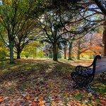 Pollard Park