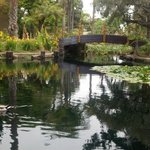Lagoon on property