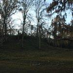 Lake Jackson Mounds State Park - The Mound