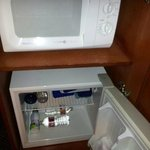 Mini microwave and fridge in room
