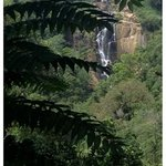 the view from Waterfalls Homestay
