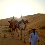 Sunset Camel Trek