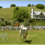 Equestrians Welcome!