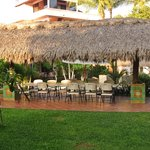 Palapa in the court yard