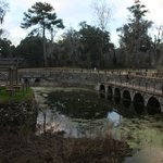 Radium Springs Gardens - Albany, GA