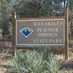 Wes Skiles Peacock Springs State Park