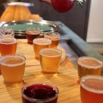 Craft ale tasting trays for NZD$5