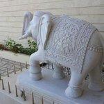 Elefante all'ingresso
