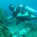 Ocean Sun Dive Resort Tulamben Photo