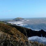 visit waves for some tasty home cooked fresh food after doing the scenic ballycotton cliff walk