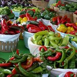 Pepper and more peppers Ruby Roy photo