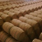 Slyrs Destillerie
