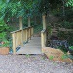 Cross small bridge to grounds around the treehouse