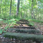 Main trails have flagstone steps and paths