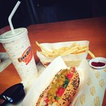 Chicago Hot Dog and Fries