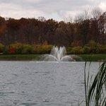 Fryer Park