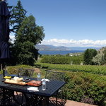 """Our Wonderful picnic lunch, supplied by """"Wine Your Way Tour"""" - Shalyn Syrjanen-Ross"""
