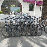 Mountain bikes at reception