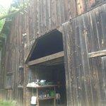 Barn/Landscape