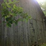 A barn beside the Inn