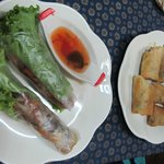 fresh and fried spring rolls