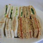 Sandwich Plate