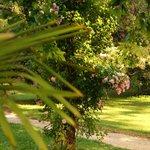Domaine de Rhondes - grounds
