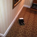 Check in Room 1109 -- who do these shoes belong to??