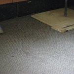 Sticky carpet.