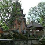 Temple gate and frangipani