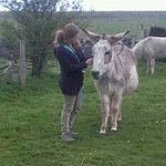 kirsten and her new donkey friend