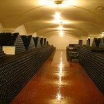 la cantina storica con 350.000 bottiglie in invecchiamento