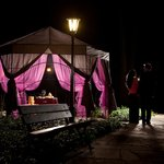 Romantic gazebo in the park - Romantyczna altana w parku