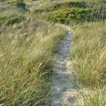 Ocracoke Campground - dune path