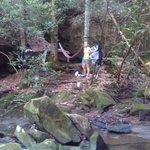 Our camping spot on Honeycreek Loop