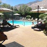 A little piece of heaven in Palm Springs!