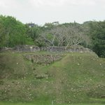 altun ha, where it was blasted for road material