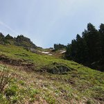 Switchbacks up to the top