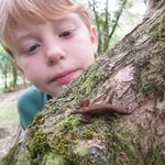 Luke checking out a a very small tree frog