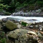 nearby mt stream for private picnic