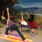yoga in Halls Gap