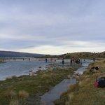 River study , Glentanner Park